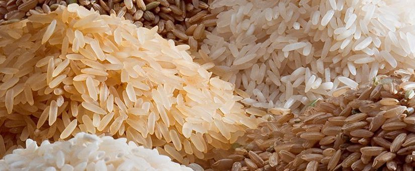 Going With the Grains – Rice